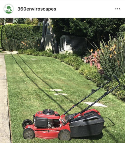Lawns and General Maintenance